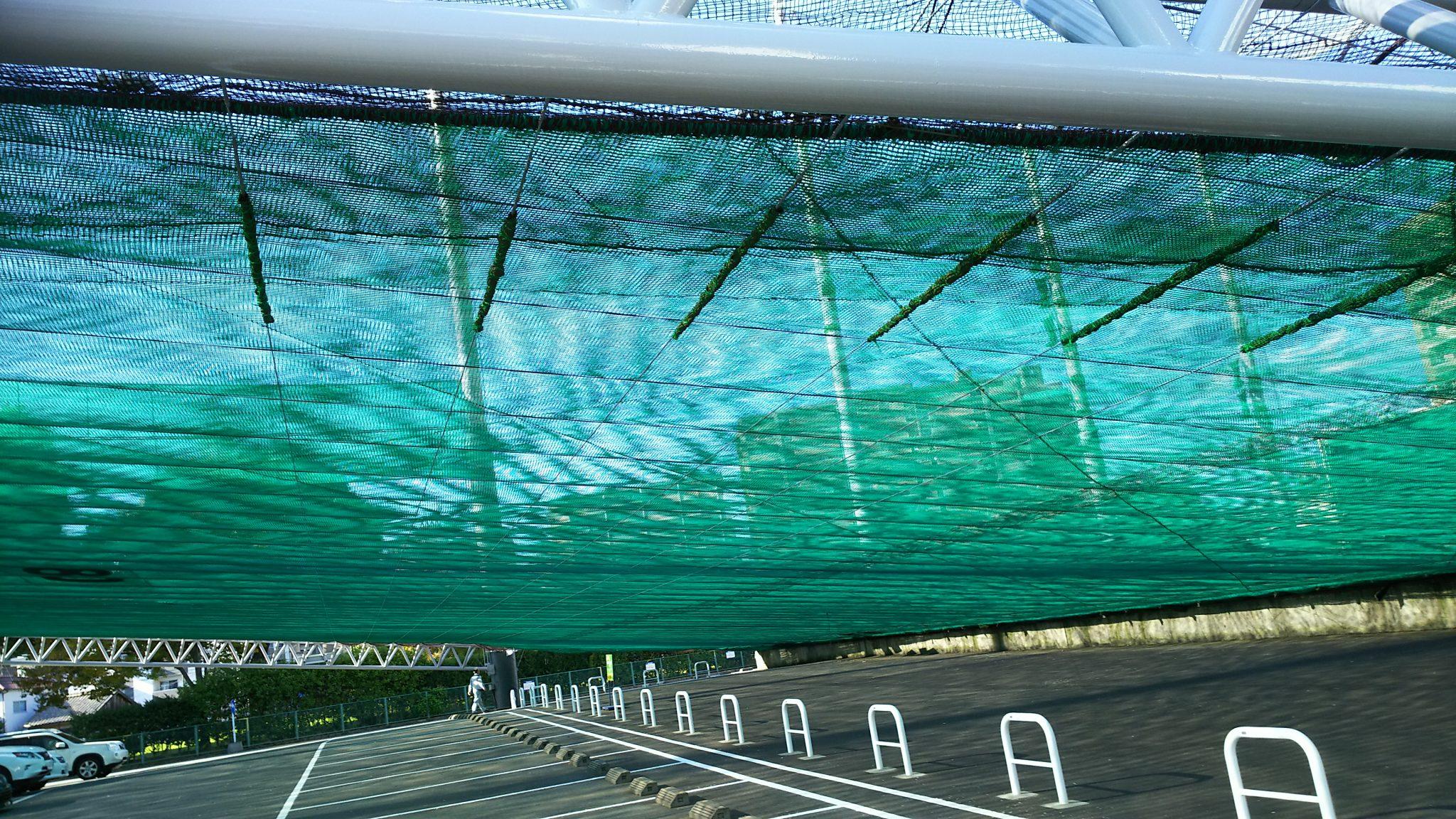 鋼線ワイヤー設置工事 image1